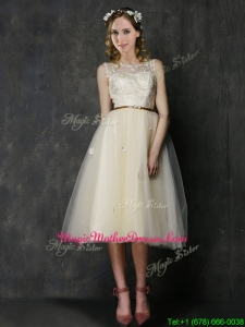 Popular Scoop Champagne Mother of Groom Dresses with Sashes and Lace