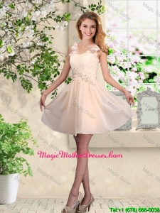 Suitable V Neck Appliques Mother Of The Bride Dresses in Champagne