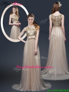 Luxurious Brush Train Mother Of The Bride Dresses with Appliques and Bowknot