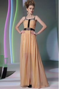 Hot Selling Sleeveless Zipper Floor Length Appliques Mother Of The Bride Dress