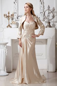 Gorgeous Champagne Sweetheart Mother of the Groom Dresses with Brush Train