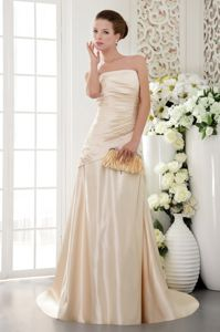 Champagne Sheath Strapless Brush Train Dress for Bride Mother in St. Catharines