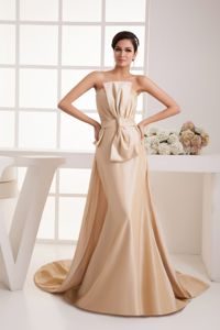 Champagne Ruching Watteau Train Bowknot Mother Of Bride Dress in MA