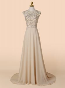 Elegant Brush Train A-line Mother Of The Bride Dress Champagne Scoop Chiffon Sleeveless With Train Backless